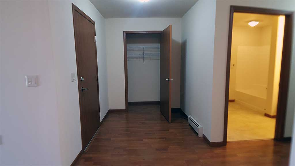 River Wood main hallway closet