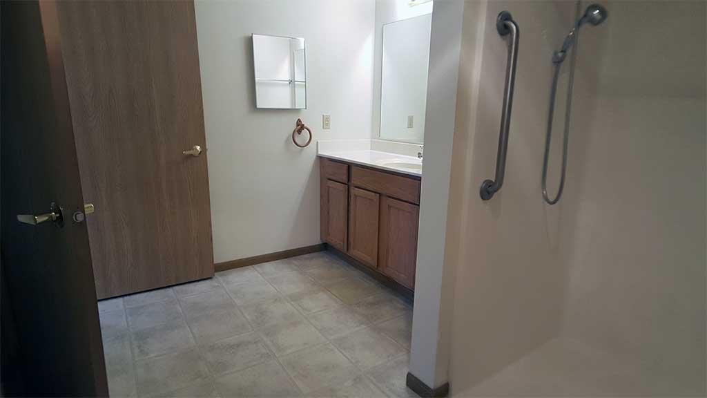 Wolf River SV full bathroom medicine cabinet front building