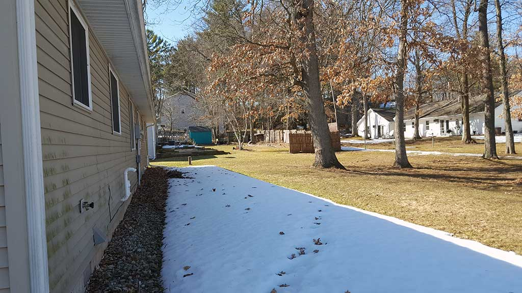 Westfield wide exterior back yard